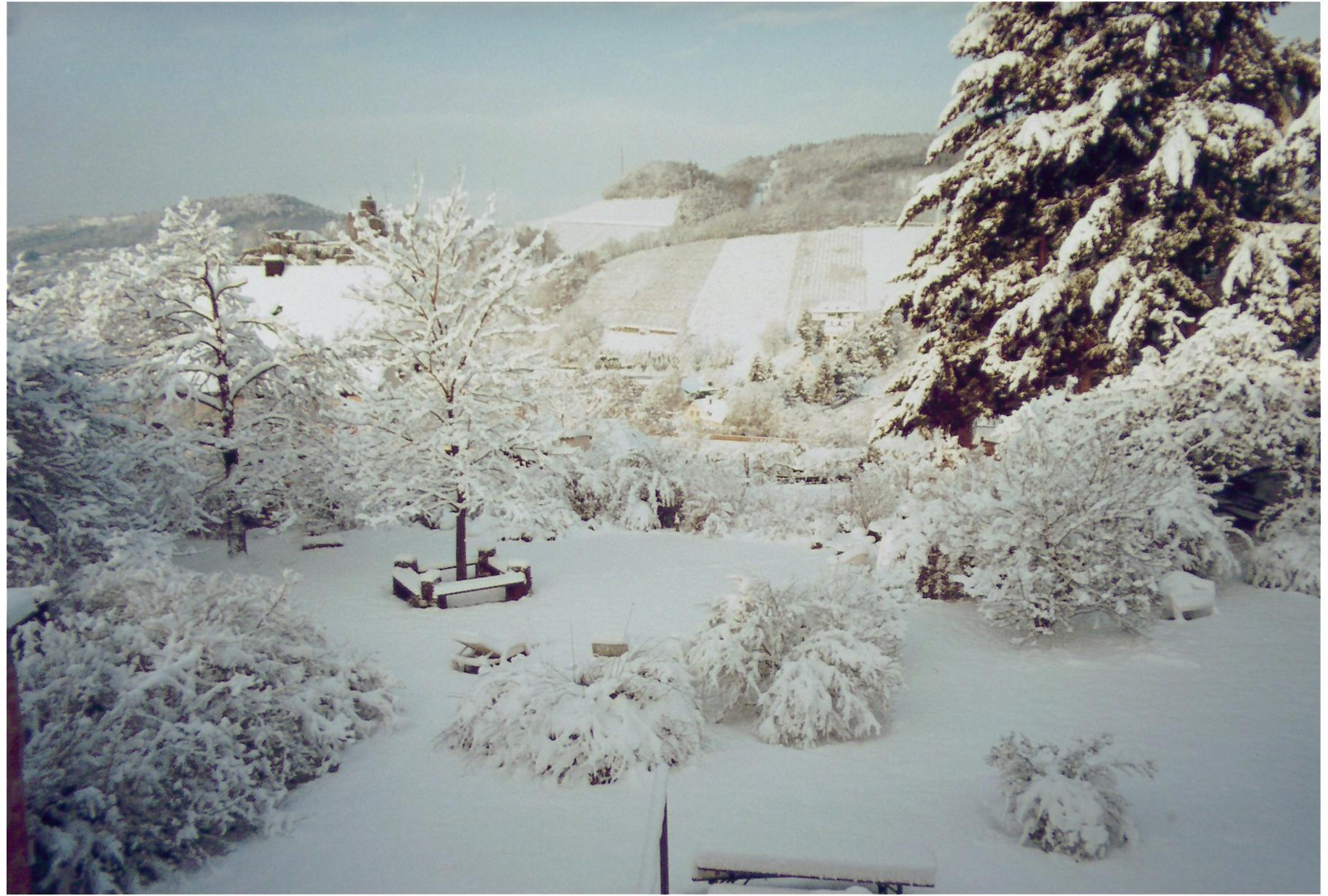 Ferienwohnungen geltz - Garten im winter ...